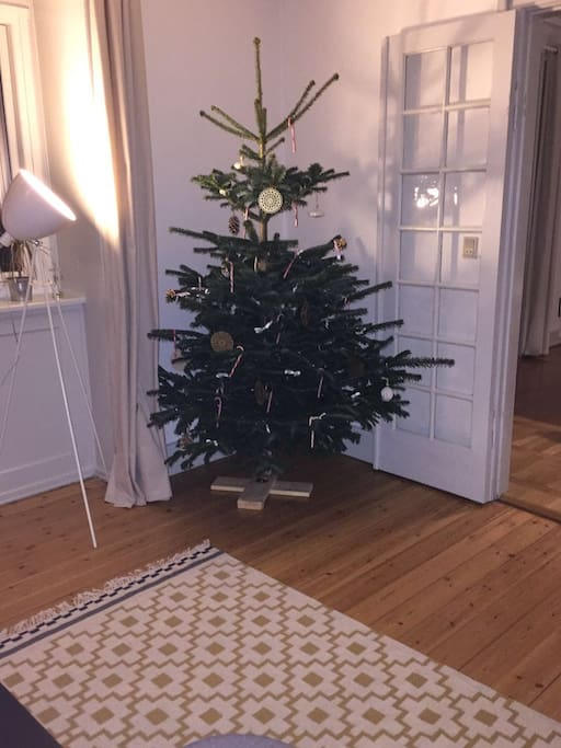 Our wonderful christmas tree