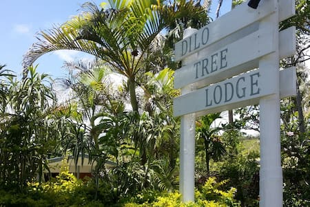 Dilo Tree Lodge - Korotogo