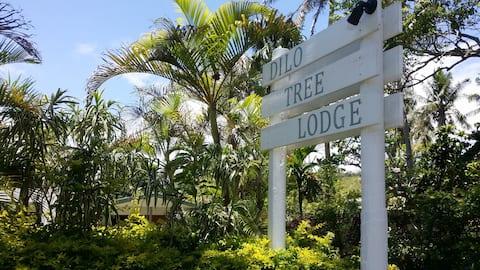 Dilo Tree Lodge