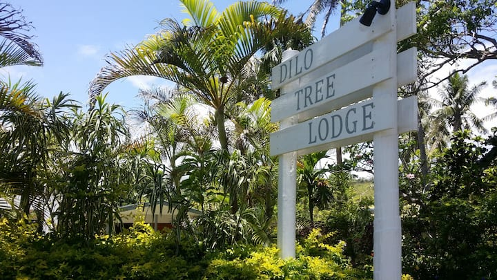Dilo Tree Lodge