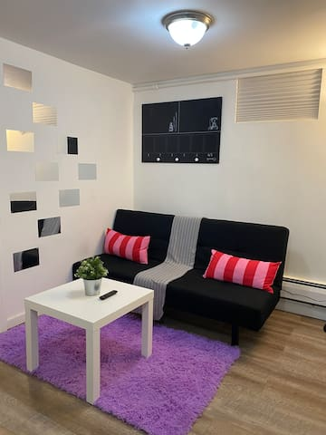 Modern, Fully Furnished, Entire Apartment