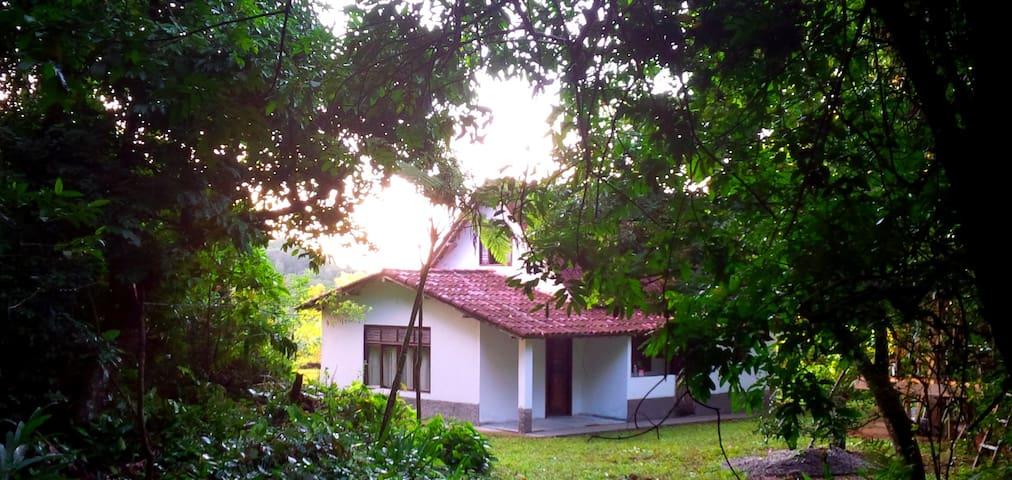 Sítio na Floresta - Forest Home - Aldeia Velha - Hytte (i sveitsisk stil)