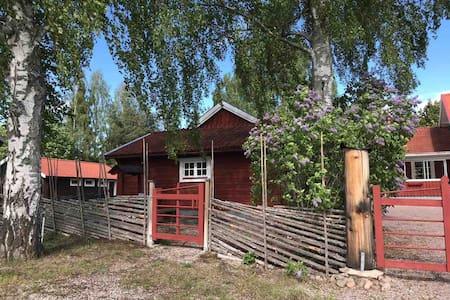 Karlsgården i Vikarbyn