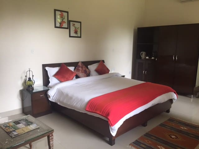 Kailash -Room 5