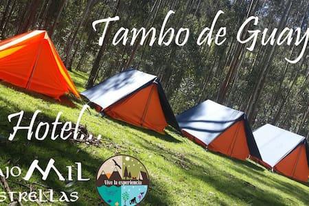 Under a thousand stars - Hotel Bajo Mil estrellas - Distrito Metropolitano de Quito - Tenda de campanya