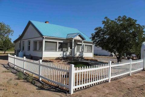 The Cactus Cottage