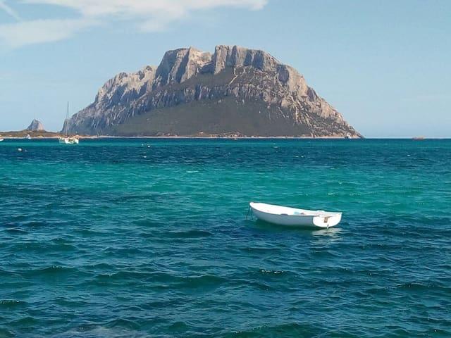 Sardinya: Sea, Mer, Meer, Mar, Mope, Hav