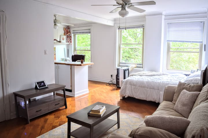 Sublet for Sunny studio on the park