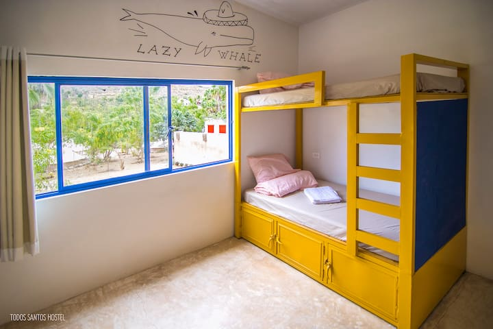 Bed in shared room - Todos Santos Hostel