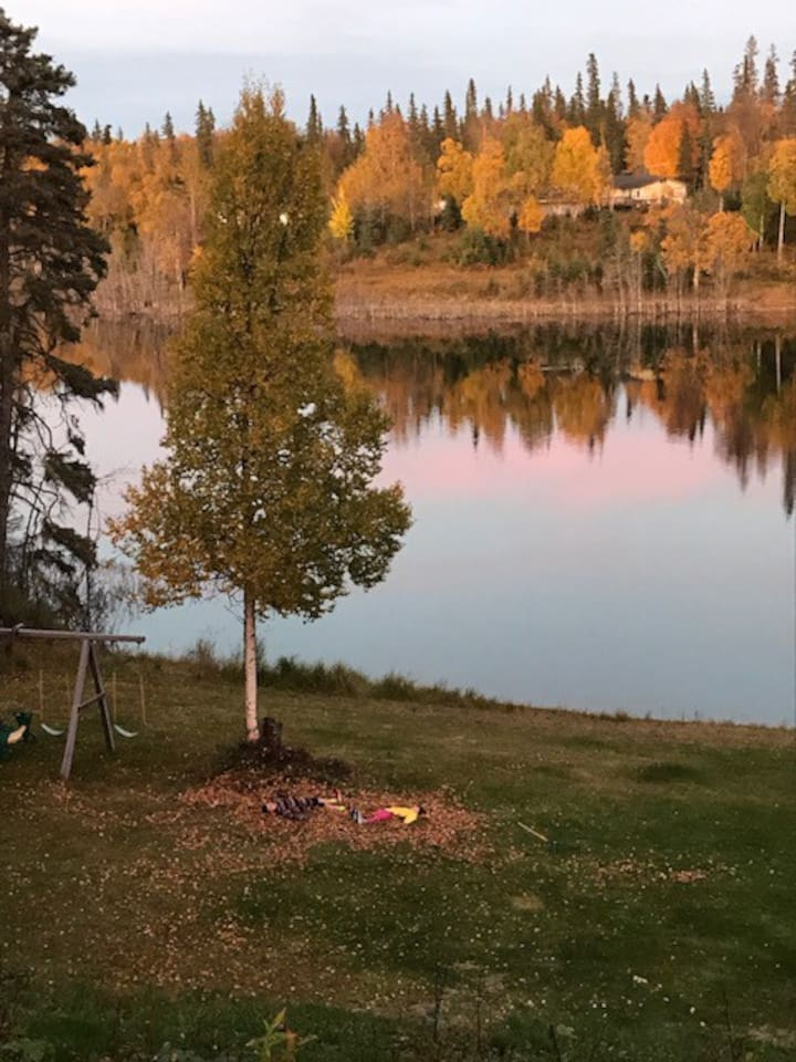 Your view of Cabin Lake from the back patio.