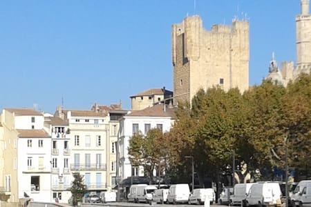 Grand appartement centre historique avec vue - Narbonne