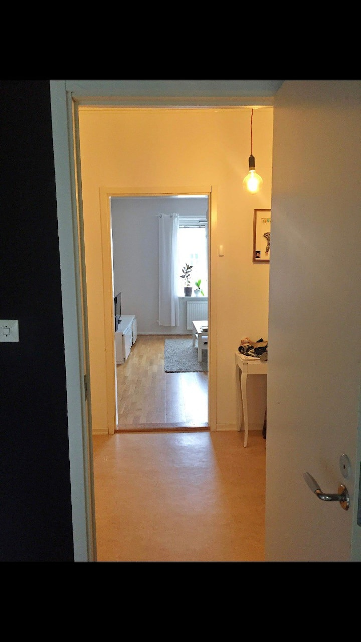 Spacious one bedroom appartment in central Majorna