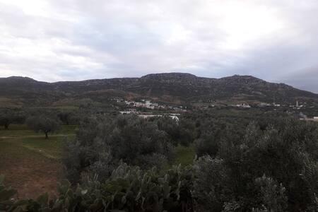 L'olivier et la montagne - Maison entière