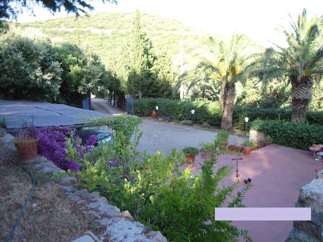 B & B Il Riccio (camera plumbaco) - Monte Argentario - Bed & Breakfast