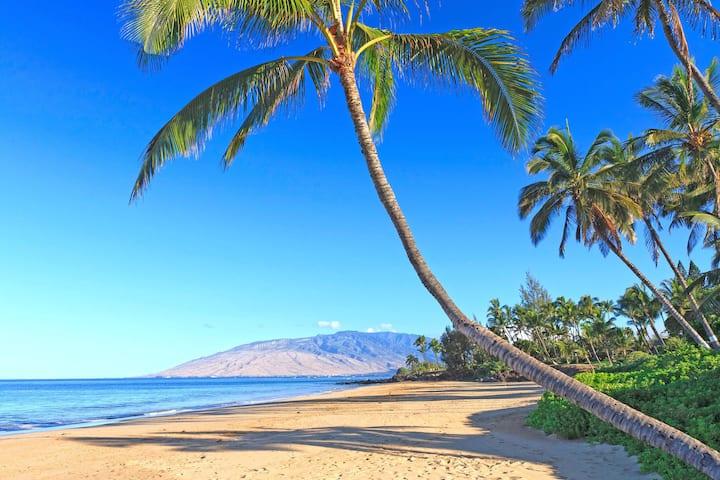 Nice apartment near great beaches in Kihei Maui