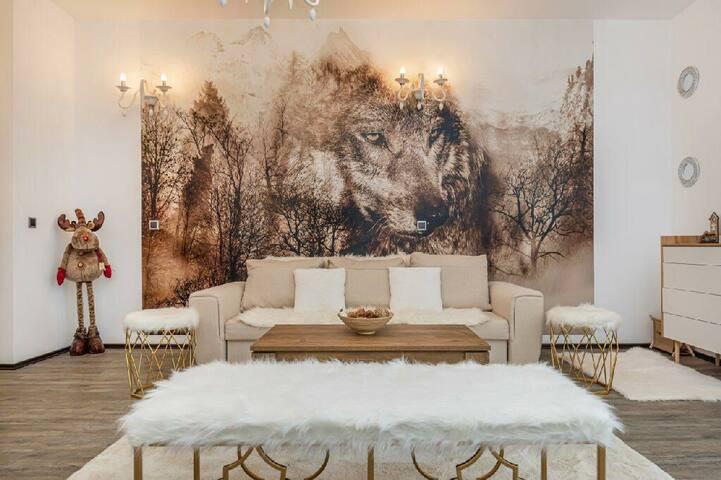 AKi Studio Silver Mountain Poiana Brasov