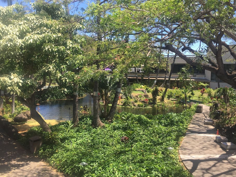 Gardens nearby Honolulu airport - 5 miles away