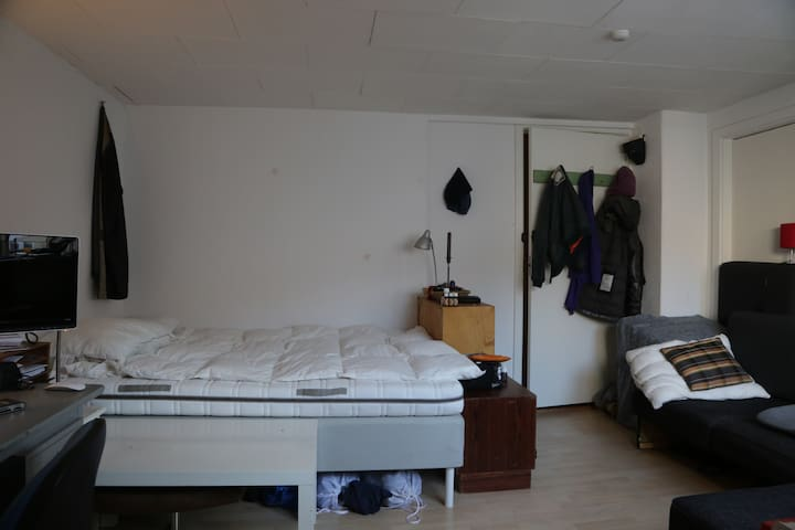 BIG ROOM WITH PRIVATE KITCHEN IN AARHUS C