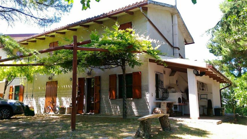Casa sulle colline Senigalliesi  - Senigallia - Rumah