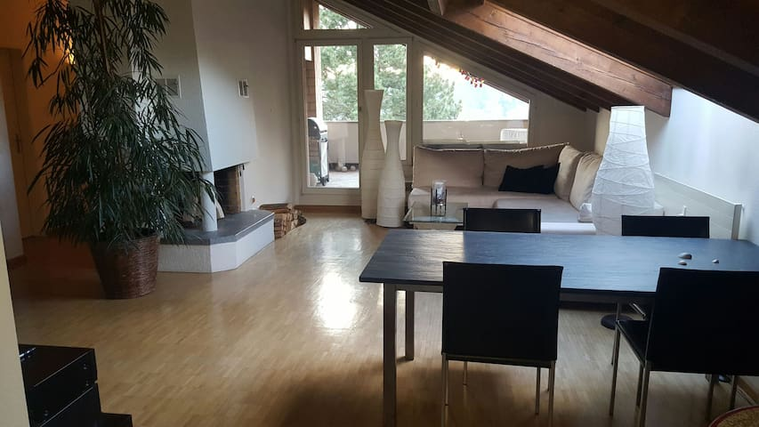 3 Rooms Appartement near Basel