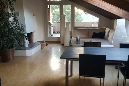 3 Rooms Appartement near Basel - Bottmingen - Квартира