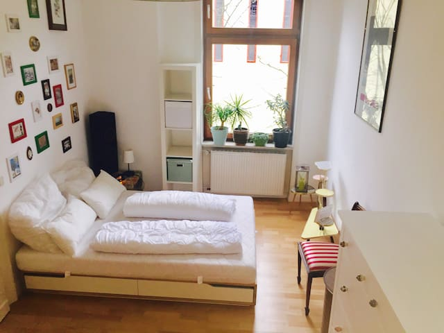 Comfy& Exotic Apartment, great convenient location - Wiesbaden - Leilighet