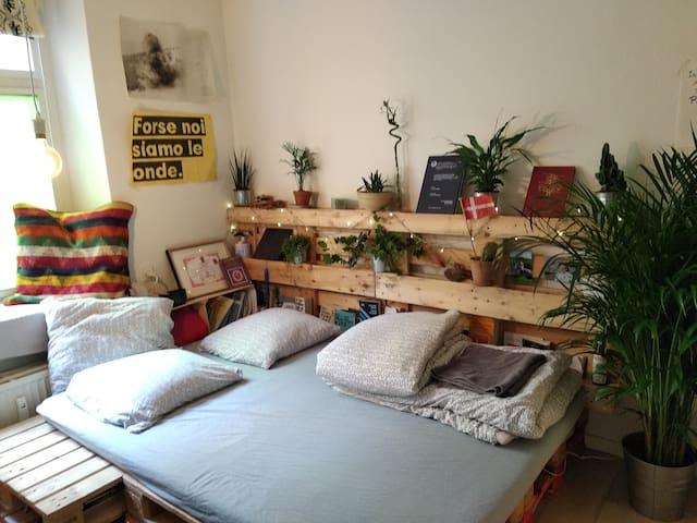 Cozy Room in the INNER CITY