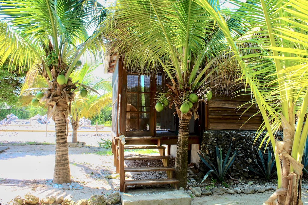 Dodge the coconut palms as you enter the Casita. Beach living doesn't get more authentic than this.