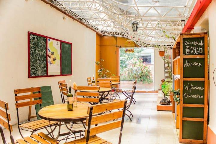 Cozy room with bright window front - La Paz