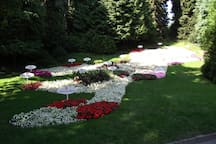 Ausflugsziel die Blumeninsel Mainau
