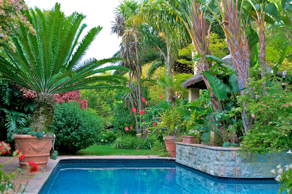 Beautiful Garden with heated pool and deck