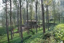 Relaxing 2 B/r Estate House, Deenaty, Tamil Nadu