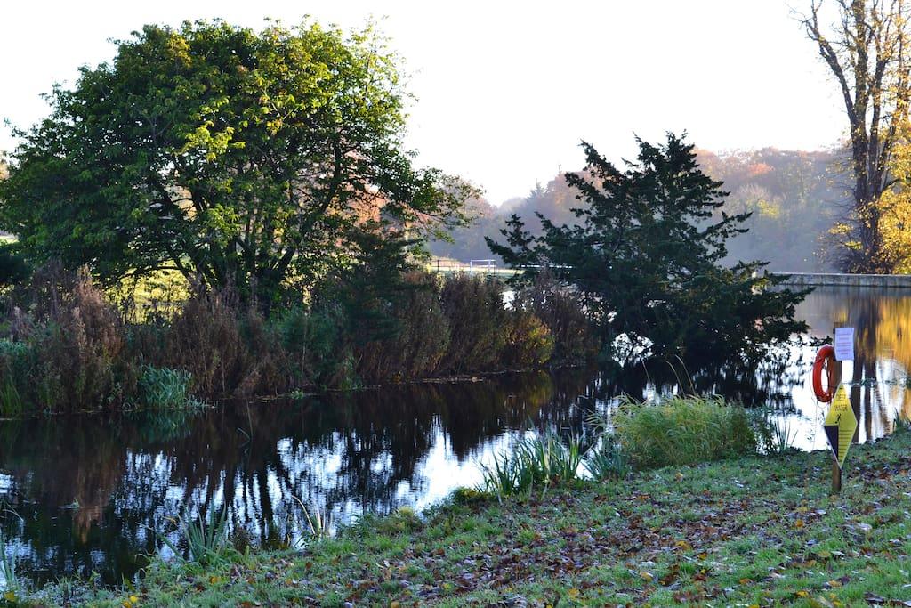 Castletown parklands
