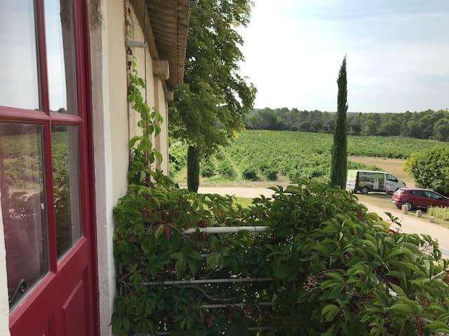 Studio au coeur des vignes - Provence