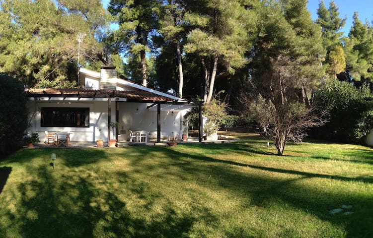 Beautiful Villa in Sani area - Sane - Hus