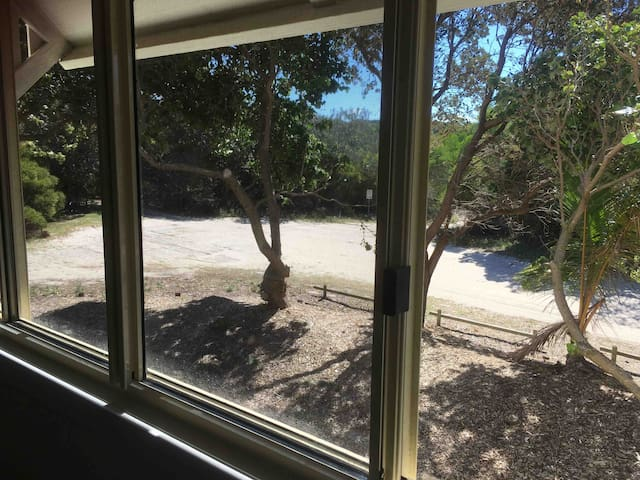 Peaceful bushland view outside bedroom window