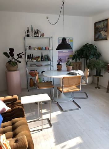 Cozy and centrally located apartment in Nørrebro