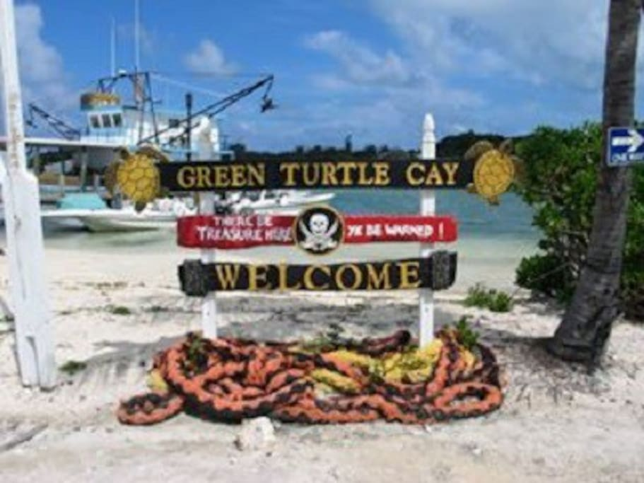 Welcome to Green Turtle Cay!