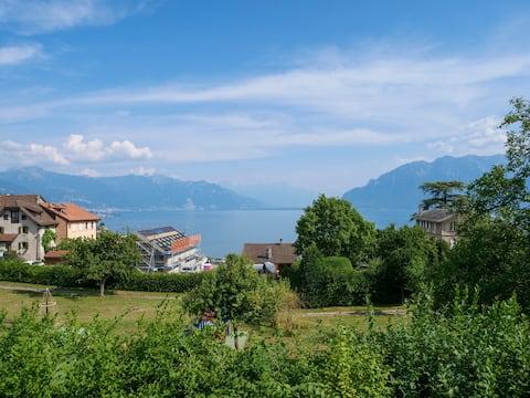 In the Vineyards Lavaux between Lausanne & Montreu
