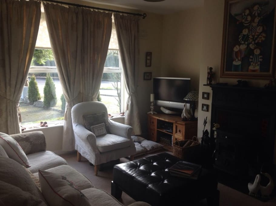 Private sitting room with satellite TV and WIFI access. Perfect relaxation space after a day in Limerick city