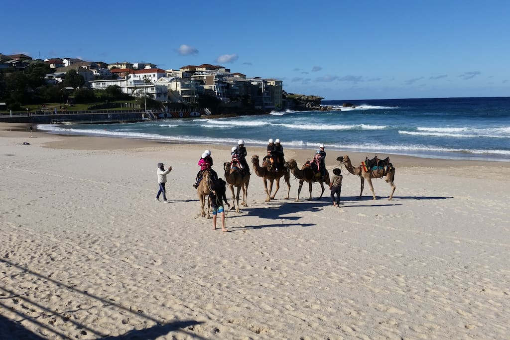 Winter in Bondi