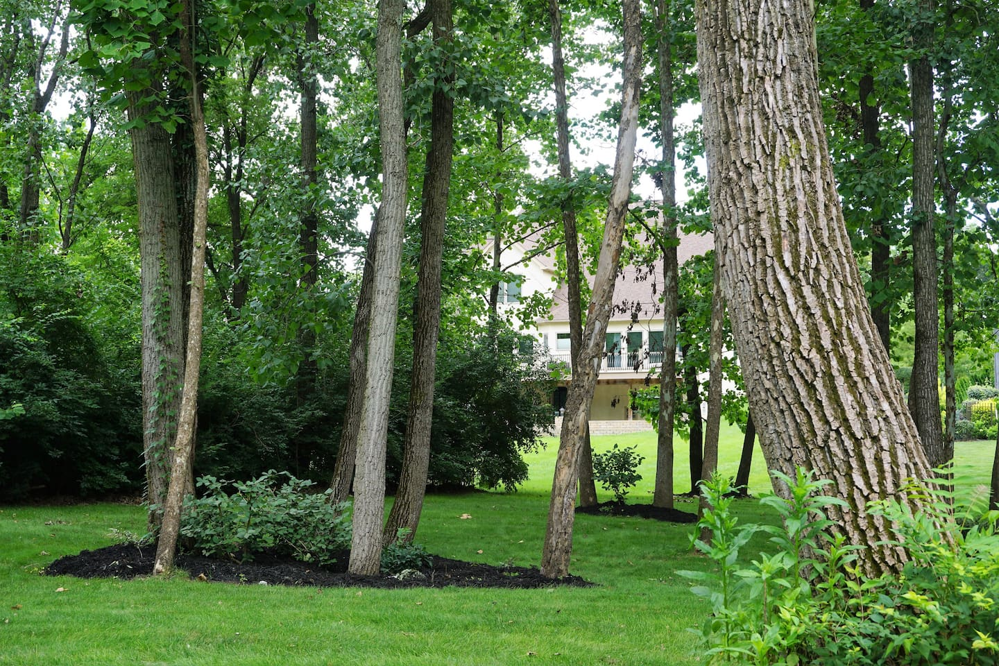 a secluded and tranquil city retreat houses for rent in columbus