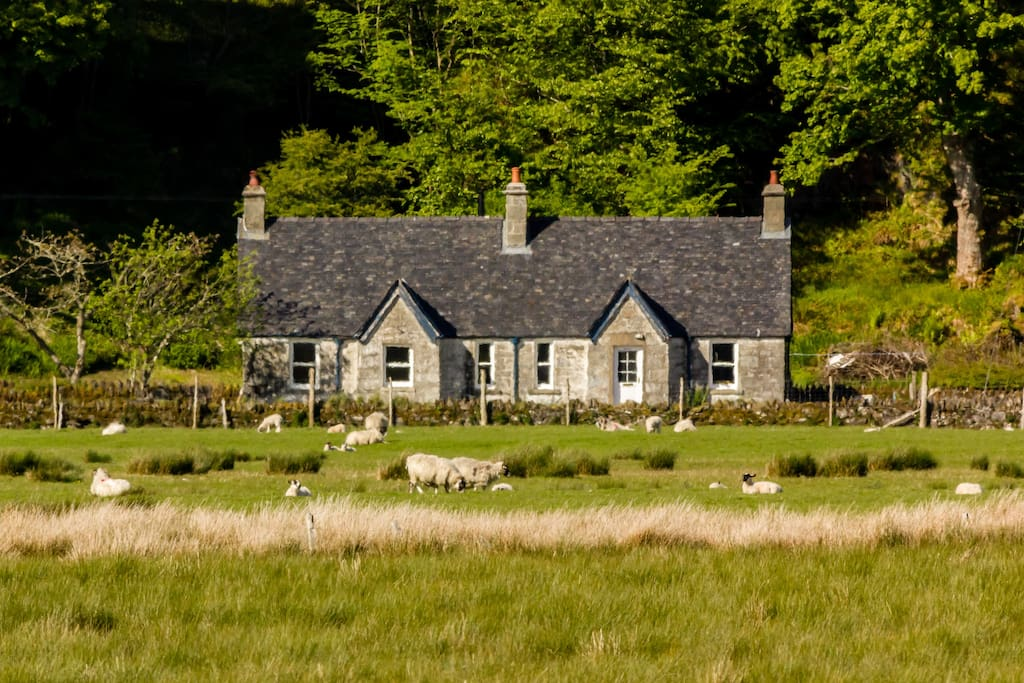 Mheall Cottage is a traditional, 170 year-old stone estate cottage set in idyllic rural Argyll with superb views across Mhoine Mhor.