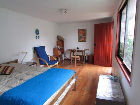Habitación en centro de Pucon