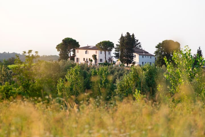 Tenuta Chiudendone in Tuscany