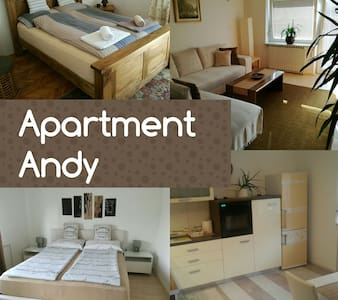 Big apartment with 4 rooms/6 person - Byt