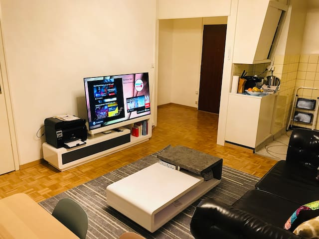 Entire Apartment . center paquis cozy and nice