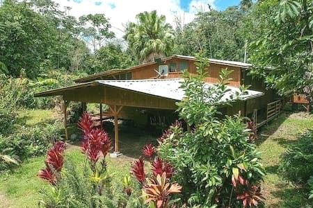 EXPERIENCE Hawaii in a Tropical Rainforest Cabin!