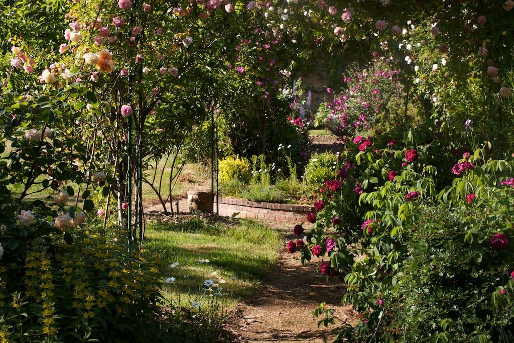 G 238 Te Au Jardin Proche Puy Du Fou Cottages 224 Louer 224 Le