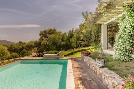 sea view villa with pool  - Olbia